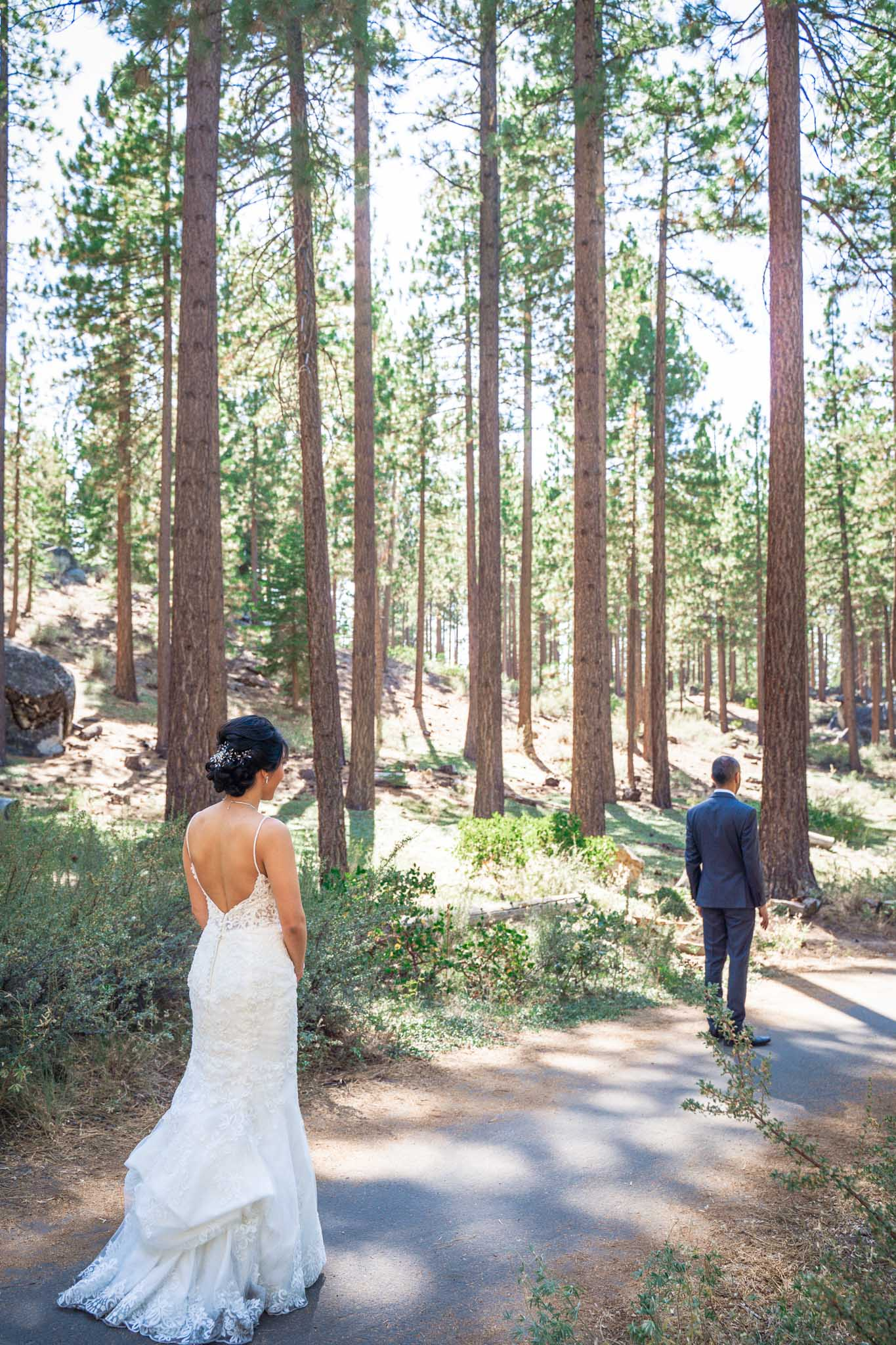 First look surrounded by pine trees in South Lake Tahoe