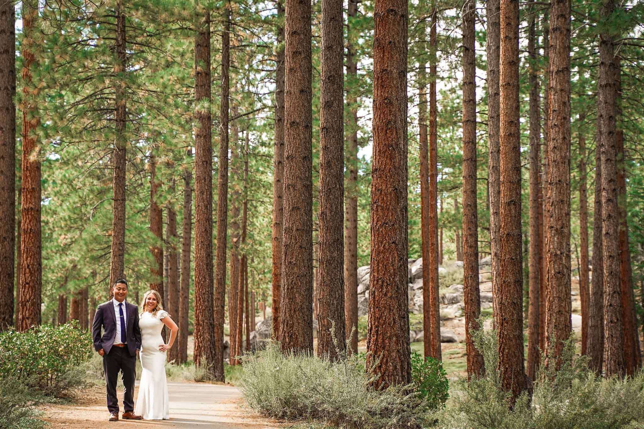 Bride and groom surrounded by pine trees in South Lake Tahoe