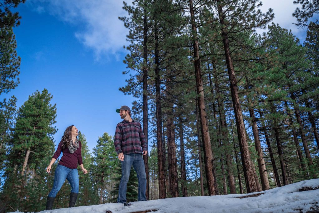 South Lake Tahoe engagement photography session surrounded by pine trees